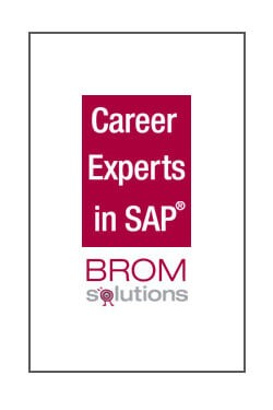 SAP BO Senior Consultant /SAP Analytics 80% (m/w) - 210890-pb